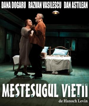 Piesă de teatru - Meșteșugul vieții