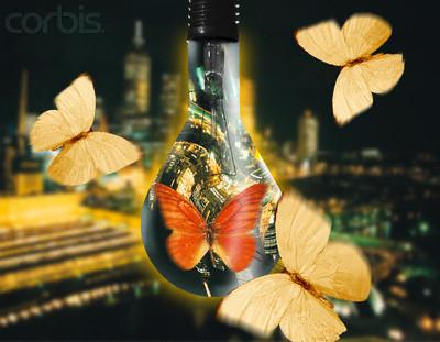 Lecția molii