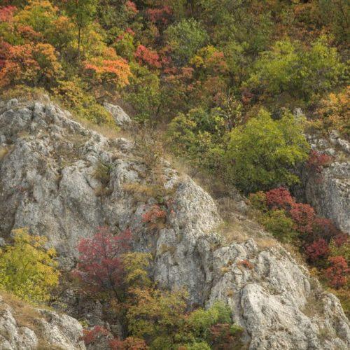 76 500x500 - Serbia Bike Touring - ep. 3: Mountains & Backroads