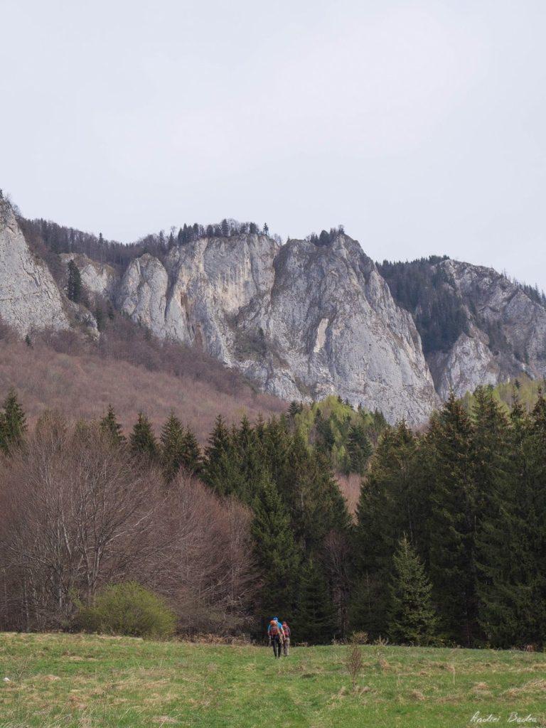 39 - Verticale în Postăvaru: Muchia Panseluței și Muchia Căprioarei