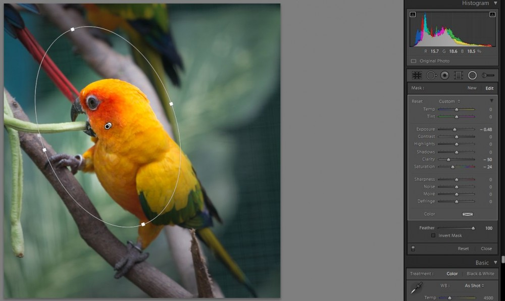 Adobe Lightroom 5 beta released: a review of the new features