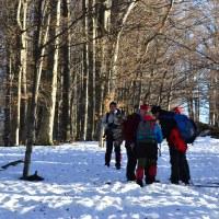 Iarna prin muntii Baiului.