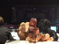 Cheersport 2014 - 12