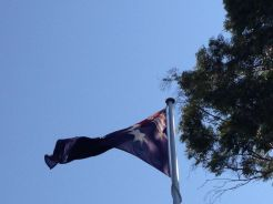 AASCF South Australia 2014 - 076
