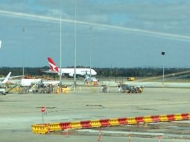 AASCF South Australia 2014 - 093