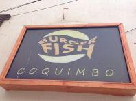 Coquimbo Chile 2014 - 160