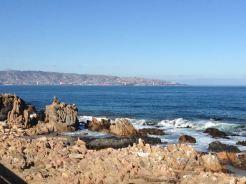 Vina del Mar, Chile 2014 - 043