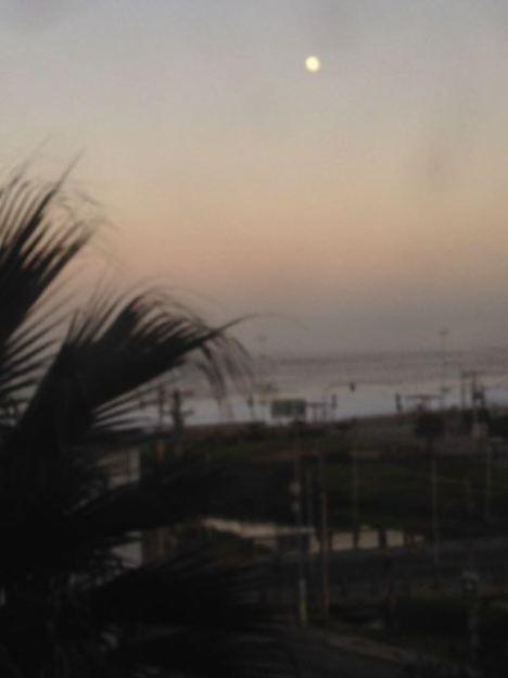 Vina del Mar, Chile 2014 - 186