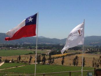 Vina del Mar, Chile 2014 - 328