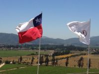 Vina del Mar, Chile 2014 - 330