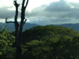 Costa Rica 2014 & More - 047