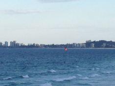 Gold Coast 2015 - 21 of 608