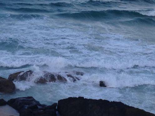 Gold Coast 2015 - 24 of 608