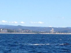Gold Coast 2015 - 476 of 608