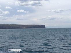Sydney 2015 - 61 of 134