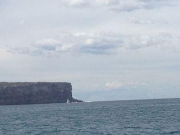 Sydney 2015 - 63 of 134