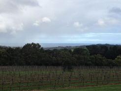 Victoria 2015 - 47 of 148