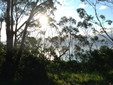 Victoria 2015 - 73 of 148