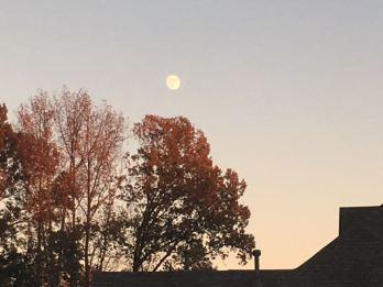 Moon - 2 of 3