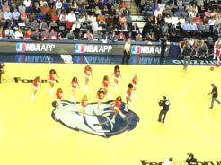 Grizzlies & Spurs 2015 - 4 of 7