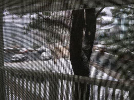 Snow Weekend 2016 - 1 of 2