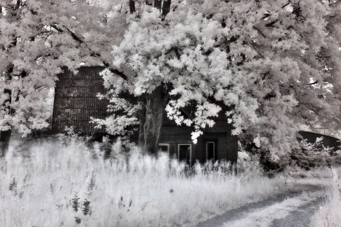 """Infrared of an abandoned house. I instantly remembered a song called: """"Kerli - Creepshow"""""""