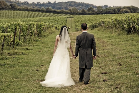 Chinese wedding in a vineyard