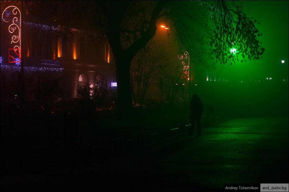 Sofia evening №9