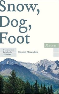 Snow, Dog, Foot by Claudio Morandini