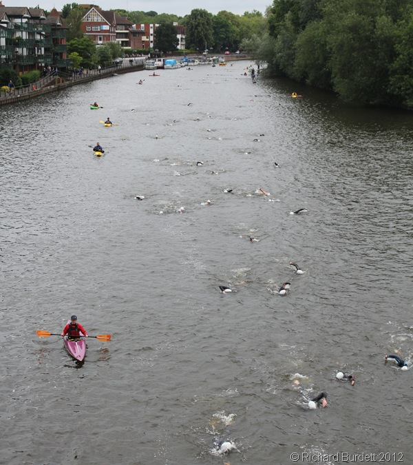SWIMMING DOWNSTREAM: By Maidenhead A4 Road Bridge, swimmers had become noticeably scattered. (IMG_6294_RMB)