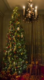 One final display from the Lights and Legends show at Waddeson Manor this Christmas.