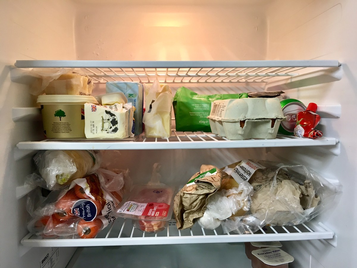 A sure-fire way to invoke envy is to fill your fridge shelves with food, when your flatmates have nothing. [PHOTO: Andrew Burdett 2016]