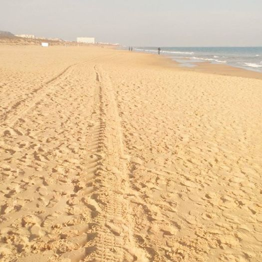 La Mata Beach ends here