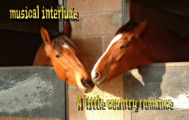 Musical Interlude: A Little Country Romance