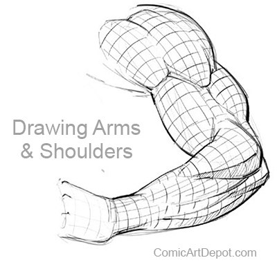 Drawing Arms and Shoulders