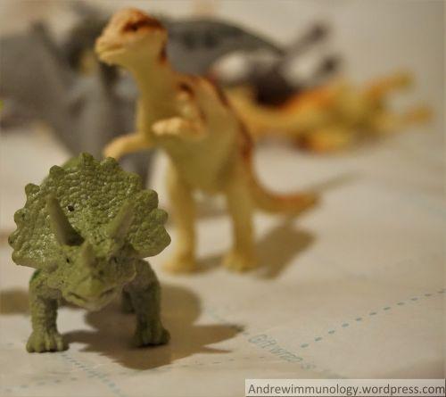 dinosaur-macrophotgraphy-2