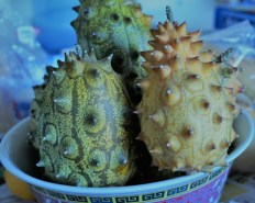 kiwano-fruit-2