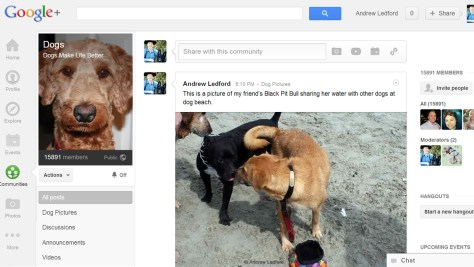 Dogs Community on Google+