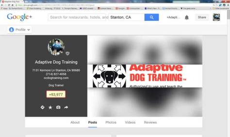 My Adaptive Dog Training  Google Plus Page