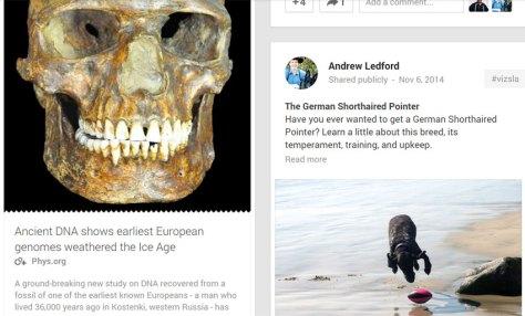 Andrew's Google Plus 11-14