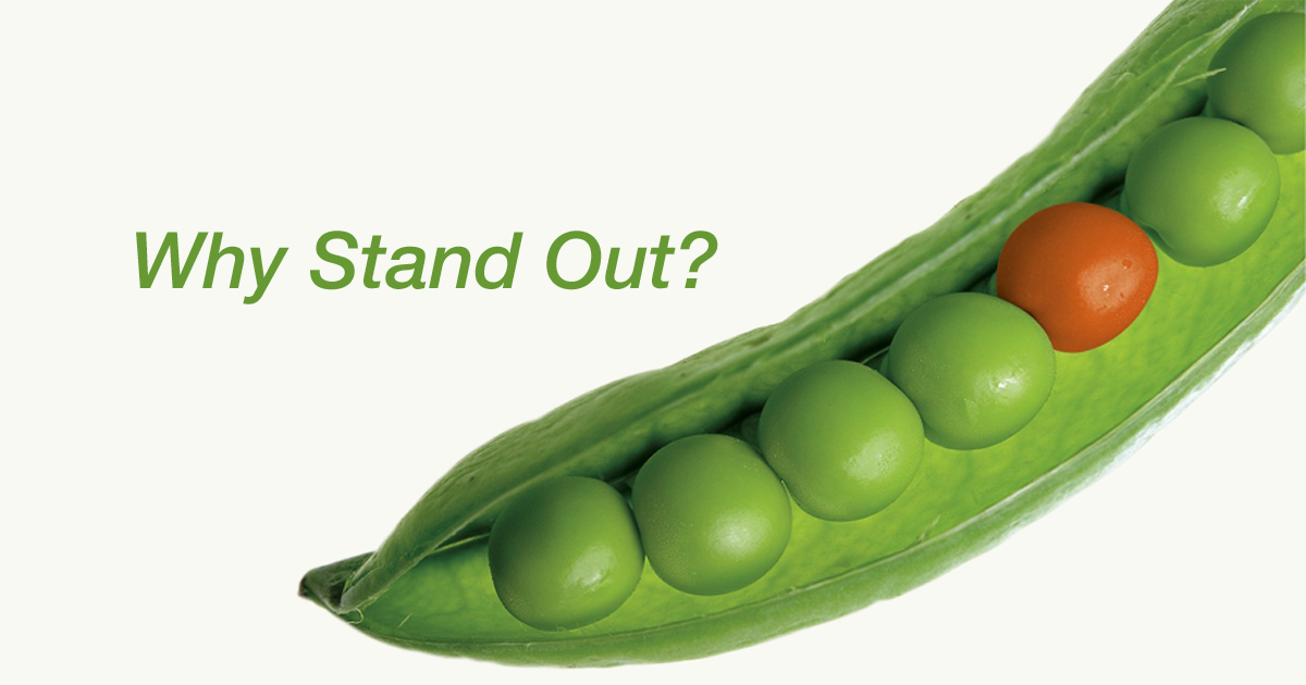 Why Don't Businesses Try to Stand Out?