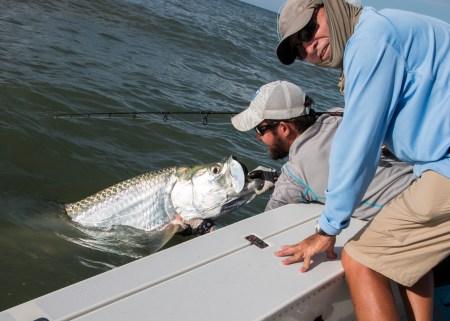 Late Season Tarpon Fishing