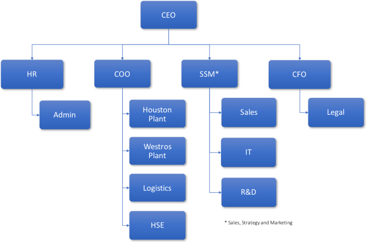 XYZ Org chart