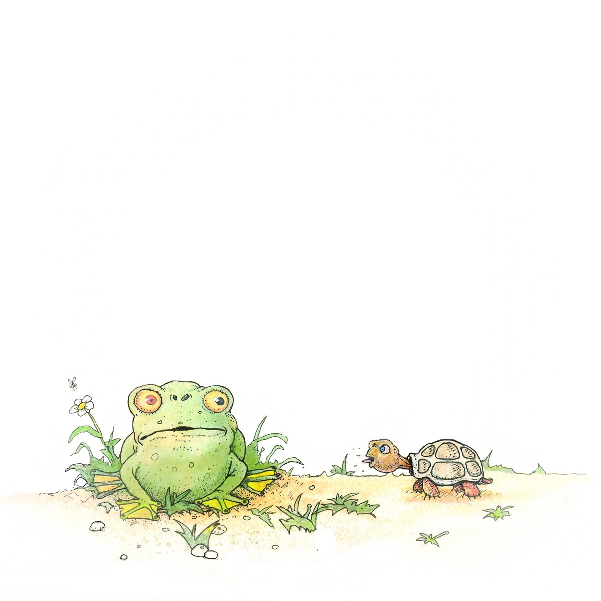 Drawing of green toad looking at a turtle sticking its tongue out