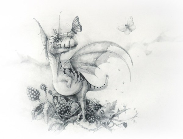 Pencil drawing of tiny dragon sitting in a blackberry bush with a butterfly on his nose