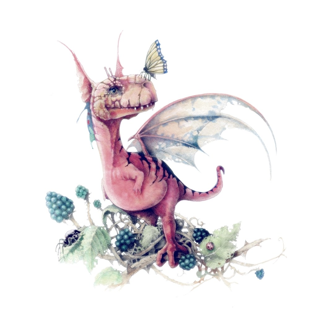 Colour drawing of tiny dragon in a blackberry bush with a butterfly on his nose