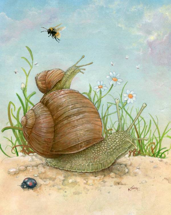 Coloured drawing of two snails with insects and flowers
