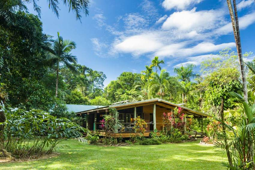 A holiday cottage surrounded by tropical Daintree rainforest