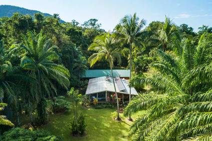Aerial view of Daintree holiday surrounded by tropical rainforest