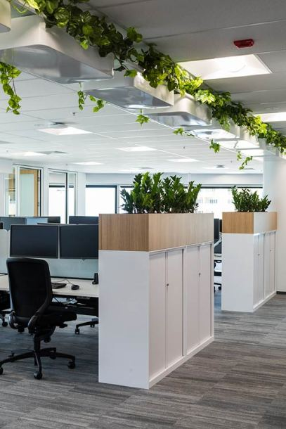 Office workspace interior with plant bed in ceiling pots